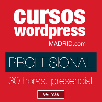 profesional-cursos-wordpress-madrid