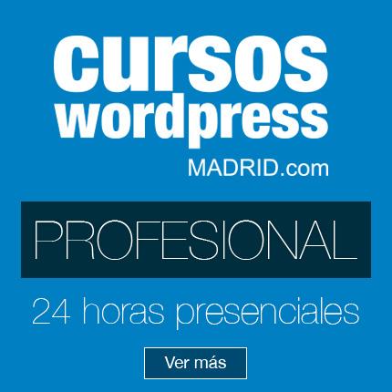 profesional-cursos-wordpress-madrid-24h